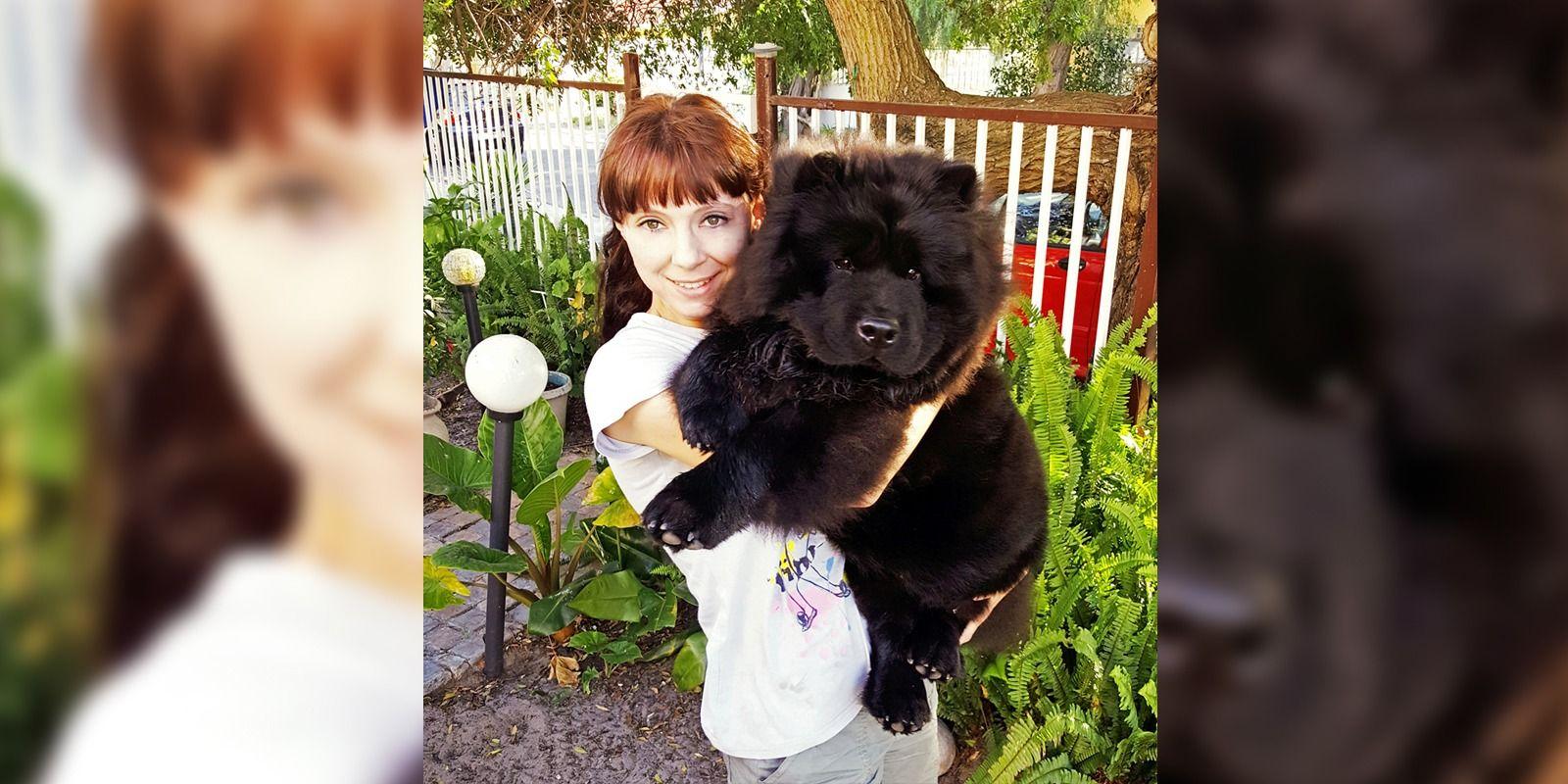 1504681981 34 hond lisel
